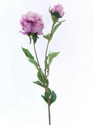 <h4>Af Peony Spray Lavender</h4>