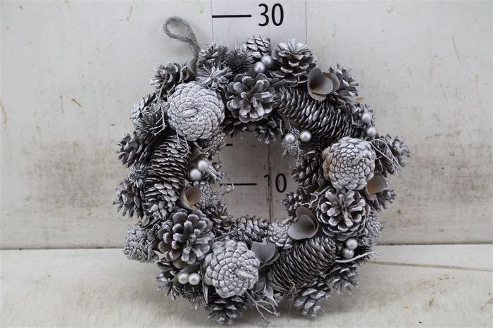 <h4>5323 Wr. Noble Silver Christmas D30 H7 H7d30cm</h4>