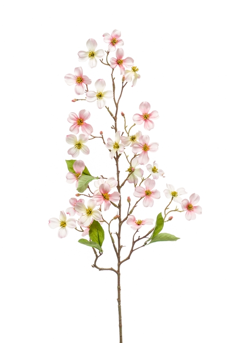 <h4>SILK DOGWOOD MINI SPRAY 83CM PINK 423522</h4>