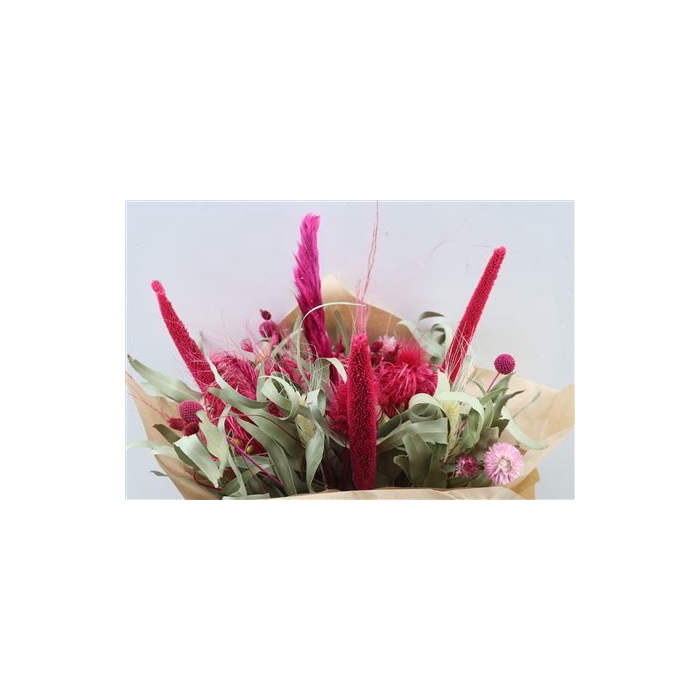 <h4>Dried Bqt Myflowers Gomera 2.0 Cerise</h4>