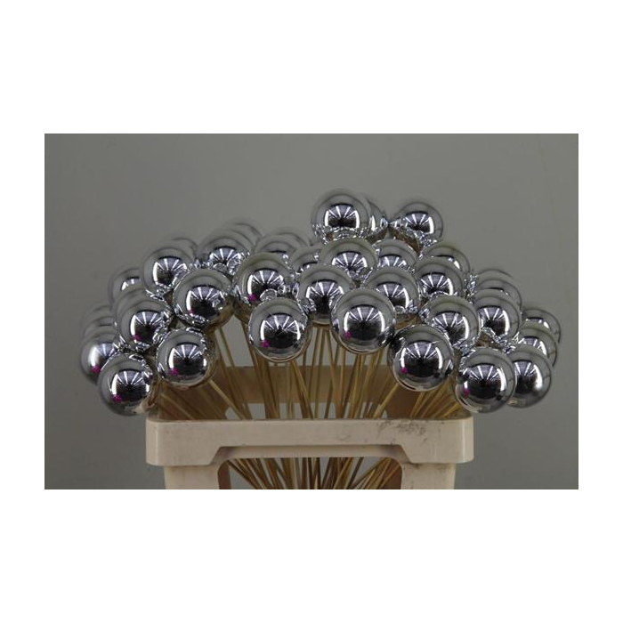 <h4>Stick Ball C. Ø6 Silver Shiny</h4>