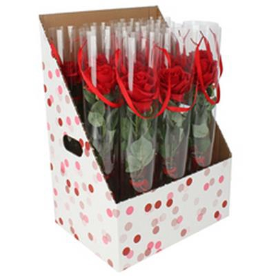 <h4>Carton display 387x289x561mm Dots rouge/rose</h4>