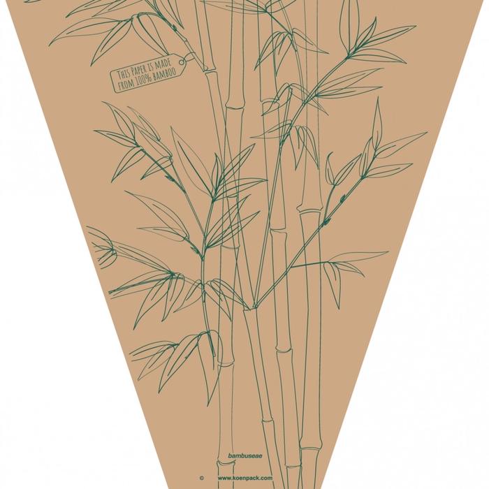 <h4>Hoezen Bambuseae 50*44*14cm x50</h4>