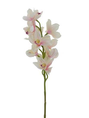 <h4>Af Orchid Cymb. 78cm Lt. Pink</h4>