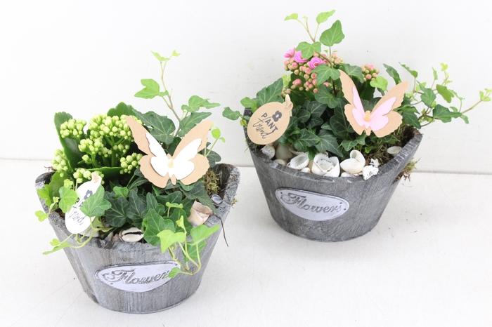 arr. PL - Hout rond flowers - roze/wit