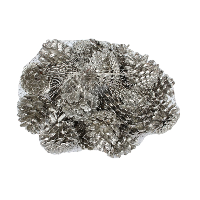 <h4>Pine cone 500gr in net platinum </h4>