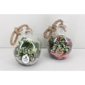 arr. PL - Glas bol met touw - roze/wit