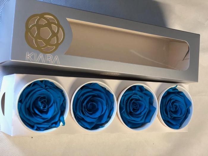 <h4>Super Rose Aqua Marine (4)</h4>