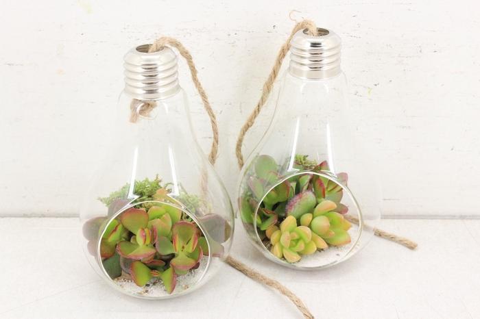 <h4>arr. WD D5 - Lamp klein</h4>