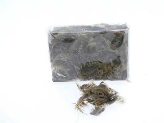 <h4>Feather 6-10cm In Box 55625</h4>