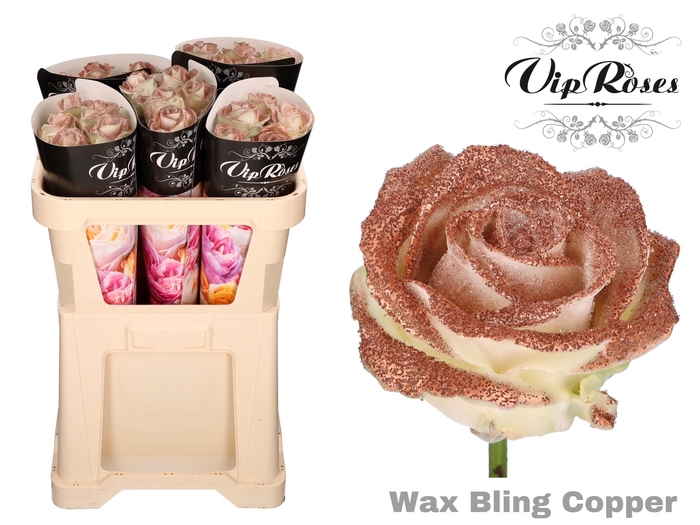 <h4>R GR WAX BLING COPPER</h4>