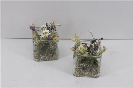 <h4>Arr. Dried Flowers Glass Vierkant Paars</h4>