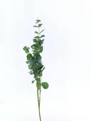 <h4>Af Eucalyptus Green 91cm</h4>