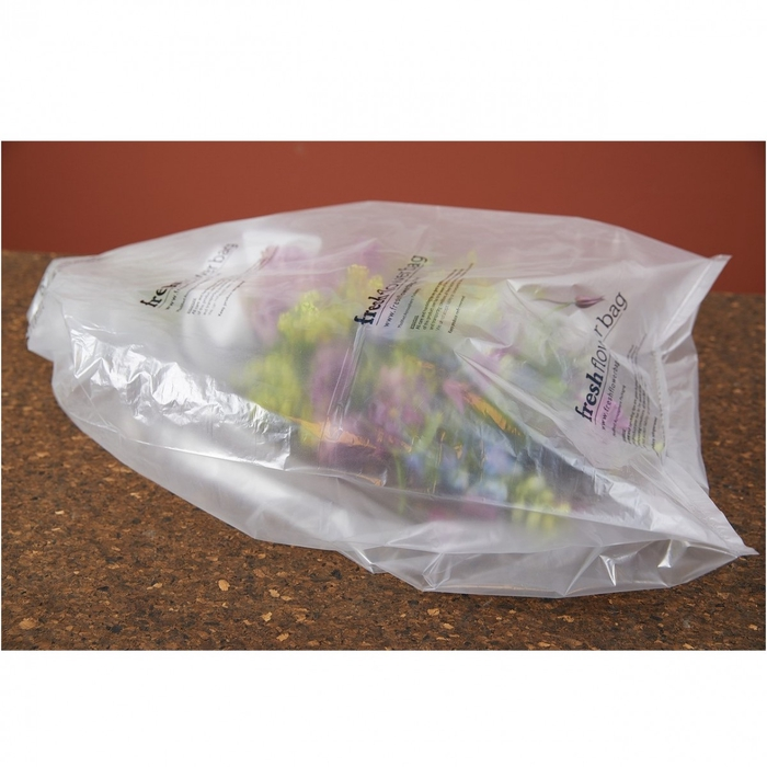 <h4>Bloemisterij Fresh Flowerbag 61*72*35cm x20</h4>