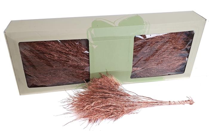 <h4>Treefern 60cm preserved per bunch Copper</h4>