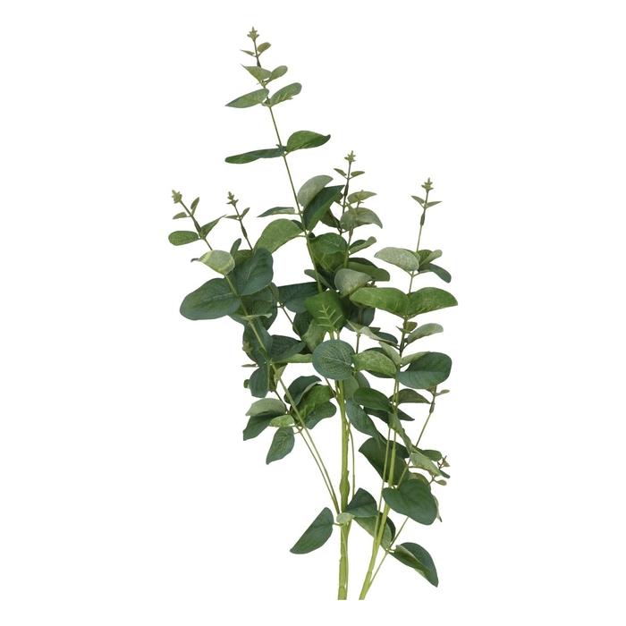 <h4>Silk Eucalypthus 75cm</h4>