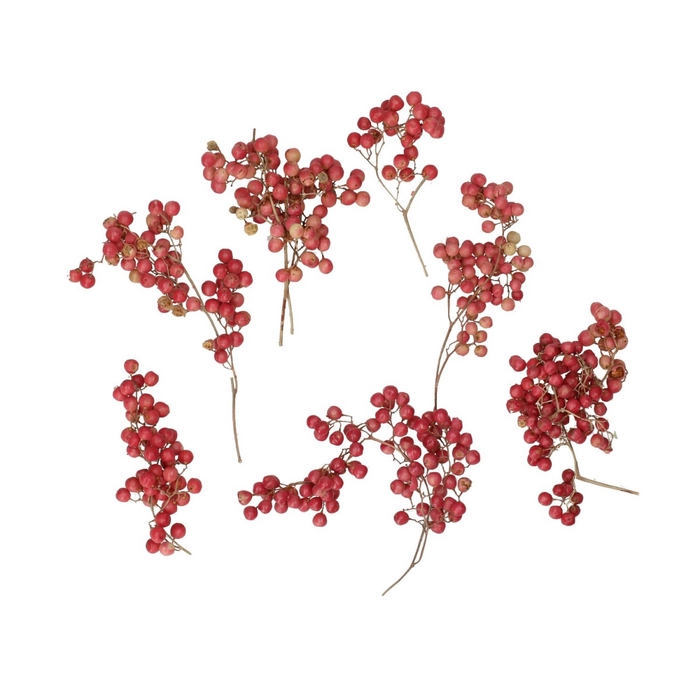 <h4>Autumn Pepperberries potpourri x24</h4>