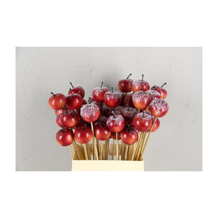 <h4>Stick Apple 4cm/medium Red+snw</h4>