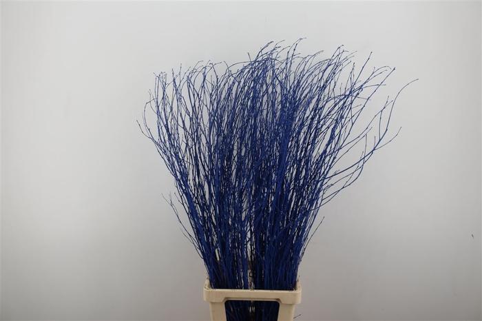 <h4>Berk Lang Blauw Pbs</h4>