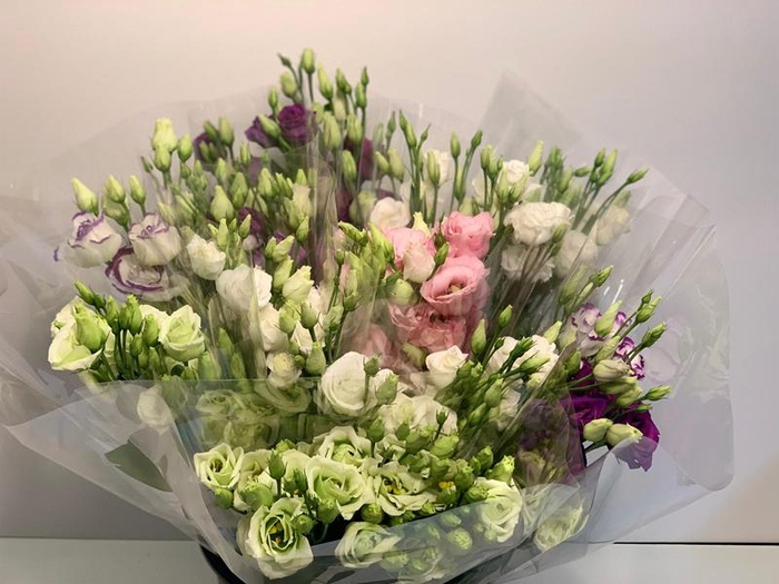 <h4>Mono Double Lisianthus Ass X 5</h4>