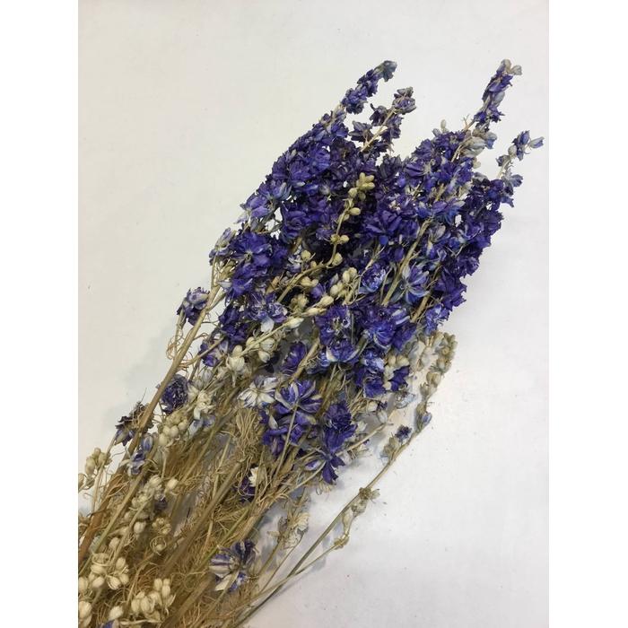 <h4>DRIED FLOWERS - DELPHINIUM CONS. DARKBLUE 10PCS</h4>