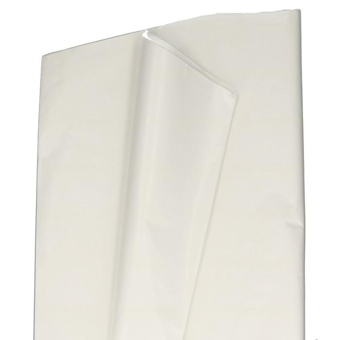 <h4>Papier Vel Witkraft 62*85cm afg</h4>