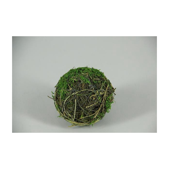 <h4>Ball Salim+moss 10cm</h4>