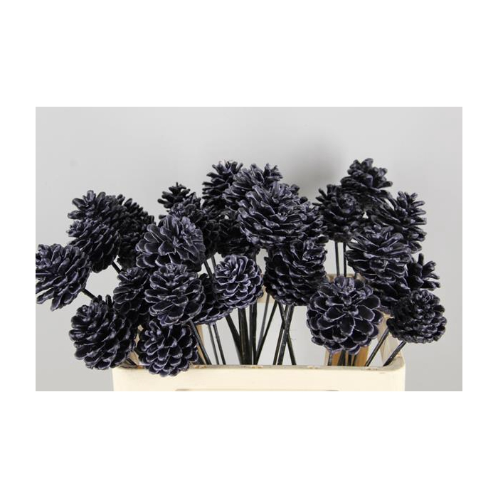 <h4>Stick Pine Cone  Wax Black</h4>