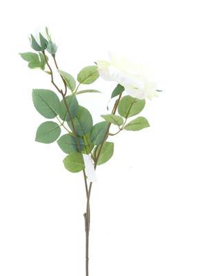 <h4>Af Rose Spray White</h4>