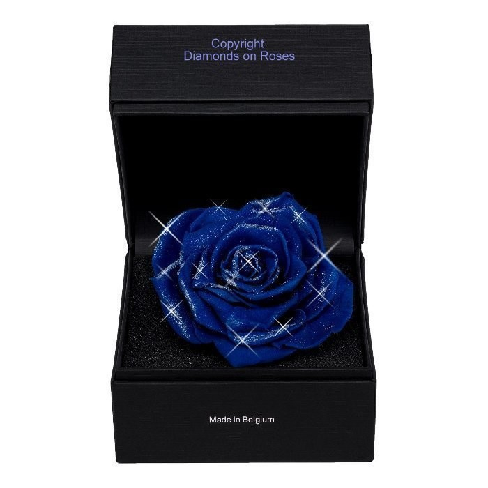 <h4>Diamantroos Blauw knop</h4>