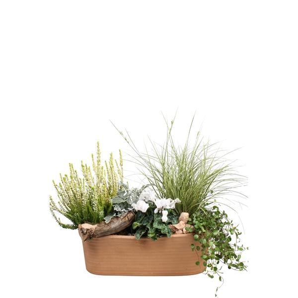 <h4>40144: Outdoor najaar arrangement</h4>
