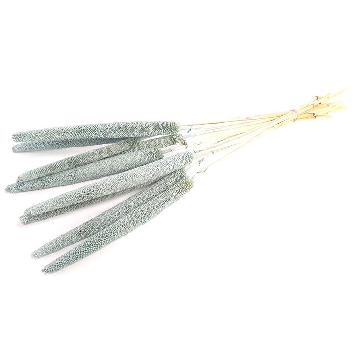 <h4>Babala on natural stem frosted Light Blue</h4>