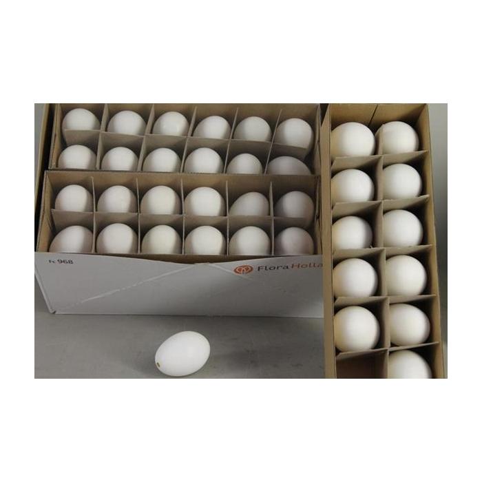<h4>Egg Duck Natural Box(12pcs)</h4>