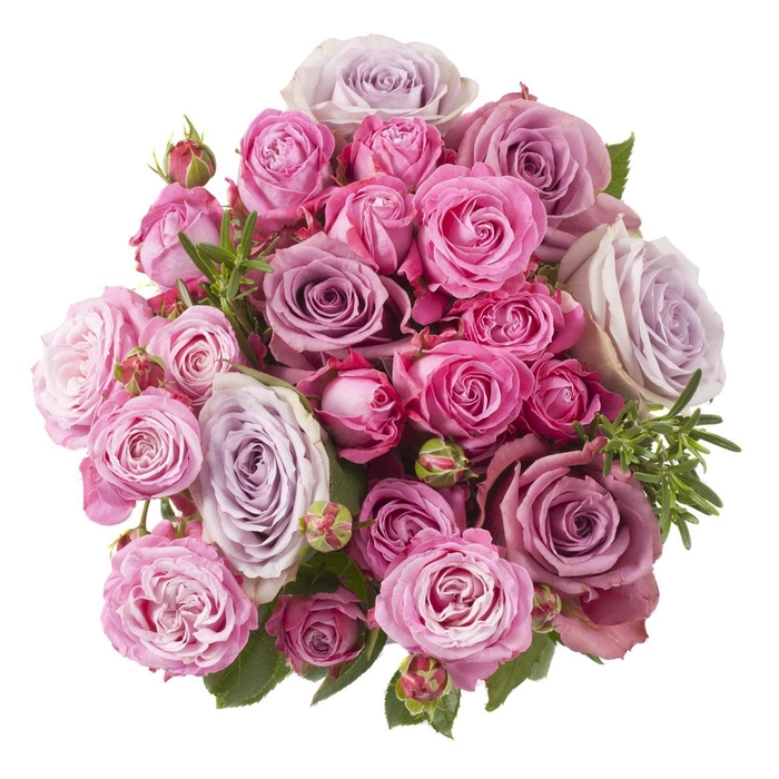 <h4>Rs Bouquet Deluxe Purple</h4>