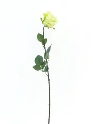<h4>Af Rose Sco Spring Green</h4>
