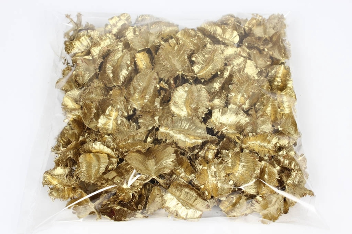 <h4>Arjun large 250gr in poly Gold</h4>