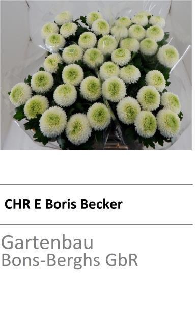 <h4>CHR E BORIS BECKER</h4>