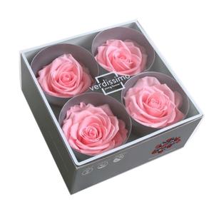Roos Premium Roze