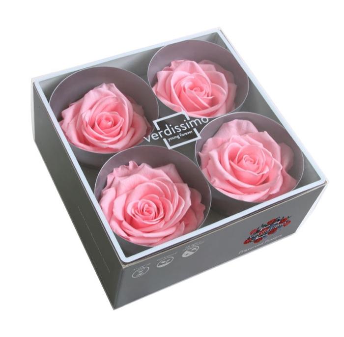 <h4>Roos Premium Roze</h4>