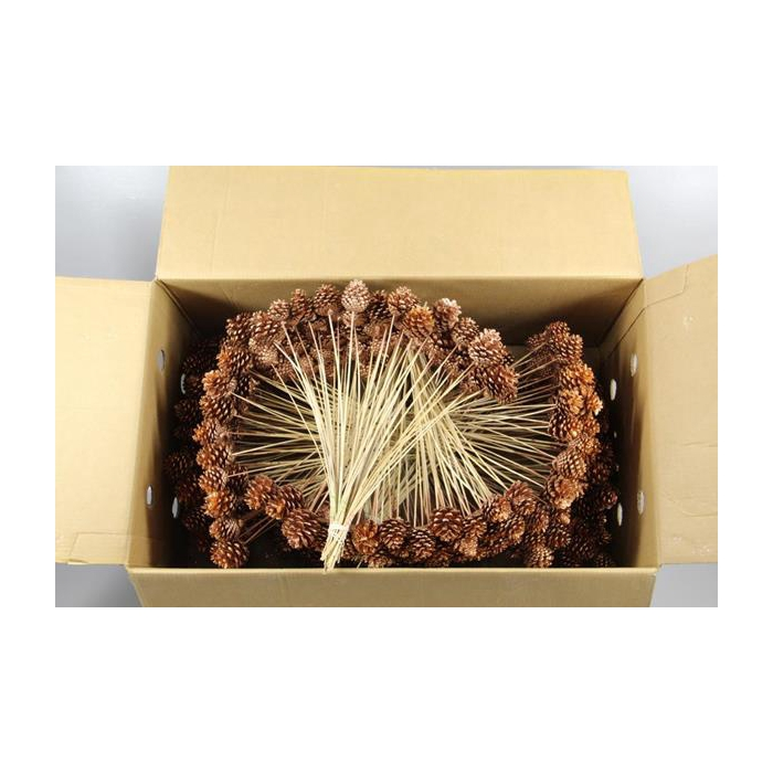 <h4>Stick Pine Cone Copper+glitter</h4>