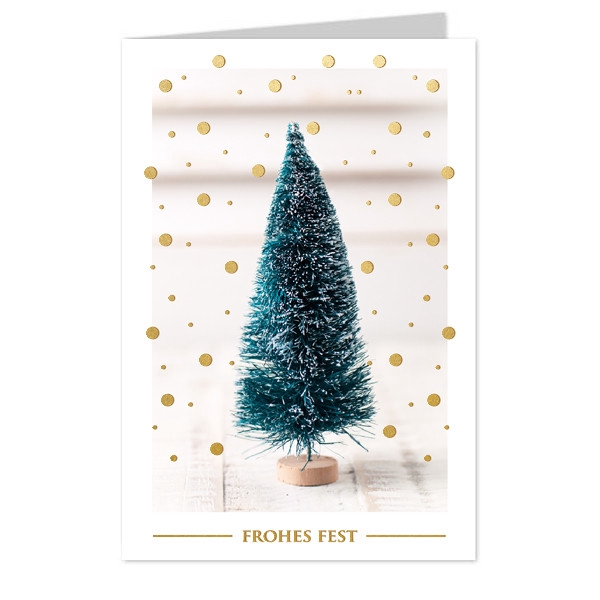 <h4>Christmas Cards 17*12cm x6 Frohes Fest</h4>