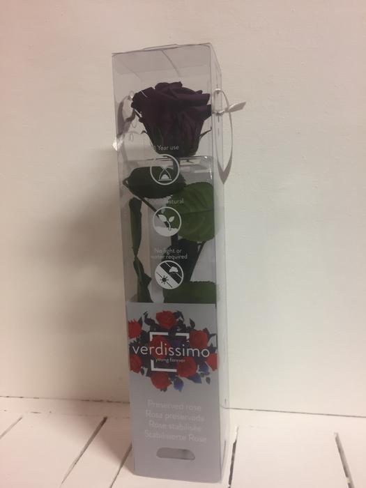 Roos op steel mini 27,5cm Purple