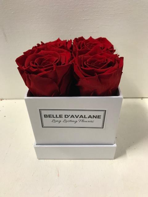 <h4>Flowerbox vk 10cm wit/rood</h4>