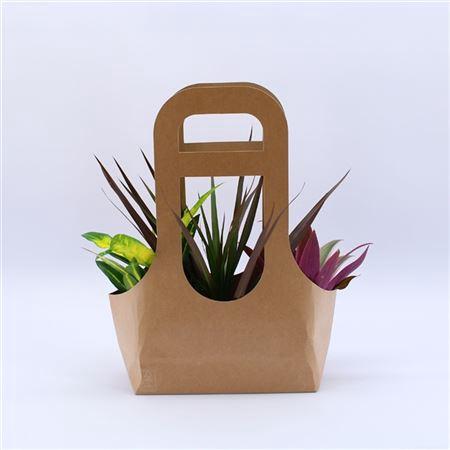 <h4>Tas 3 Ecotas Met 3 Planten</h4>