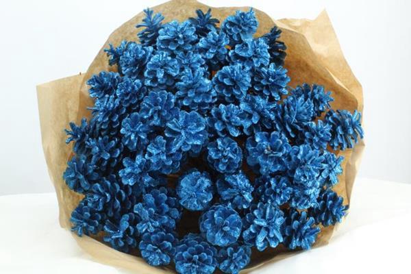 <h4>Droog Denn Blauw + Glitter X50</h4>