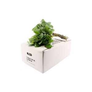 SALAL TIPS WHITE BOX