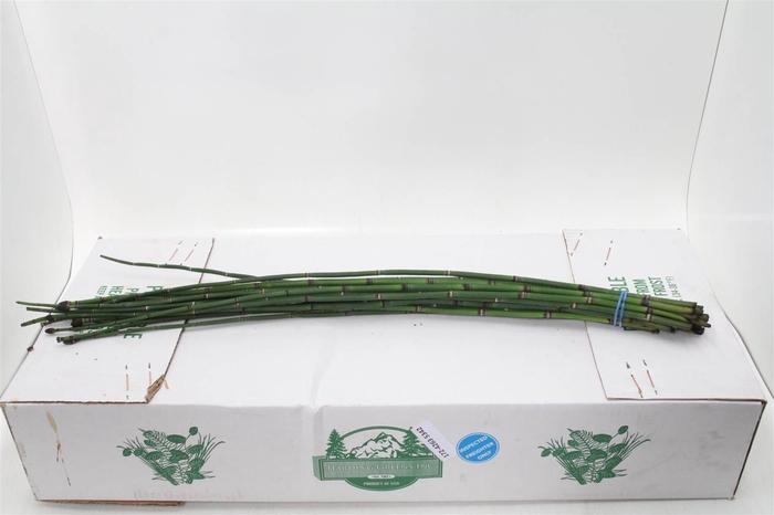 <h4>Bamboe (flowpack) X5</h4>