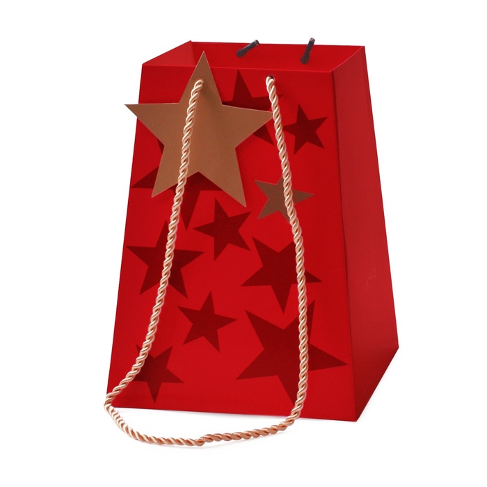 <h4>Christmas Bag Starbeat 11/11*15/15*20cm</h4>