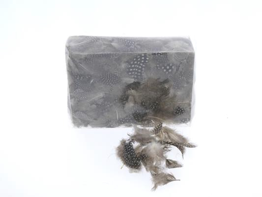 <h4>Feather 6-10cm In Box 55618</h4>