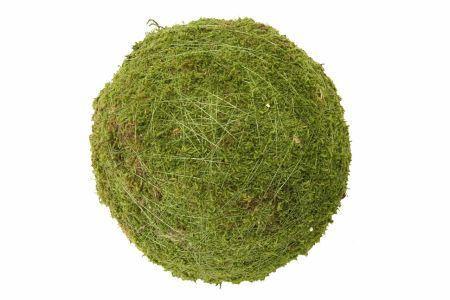 <h4>Ball Moss D30.0</h4>